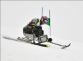 skiing3.png